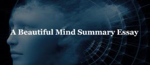 A Beautiful Mind Summary Essay