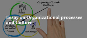 Essay on Organizational processes and Culture
