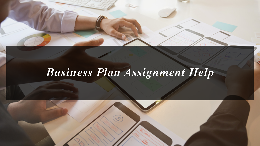 Business Plan Assignment Help and detailed sample on how to implement Business Plan Assignment
